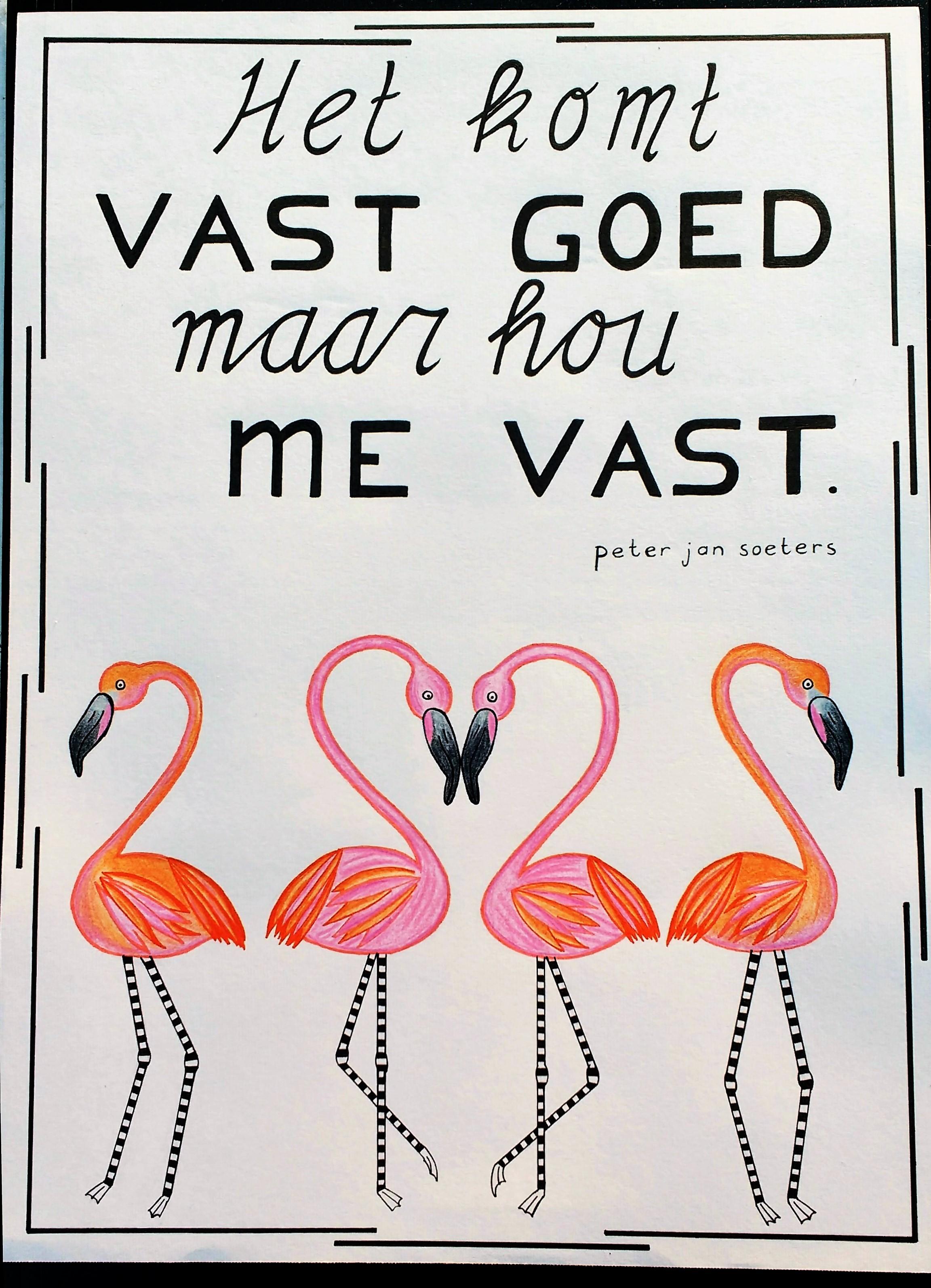 Peter Jan Soeters - Flamingo's, poster duurzaam papier